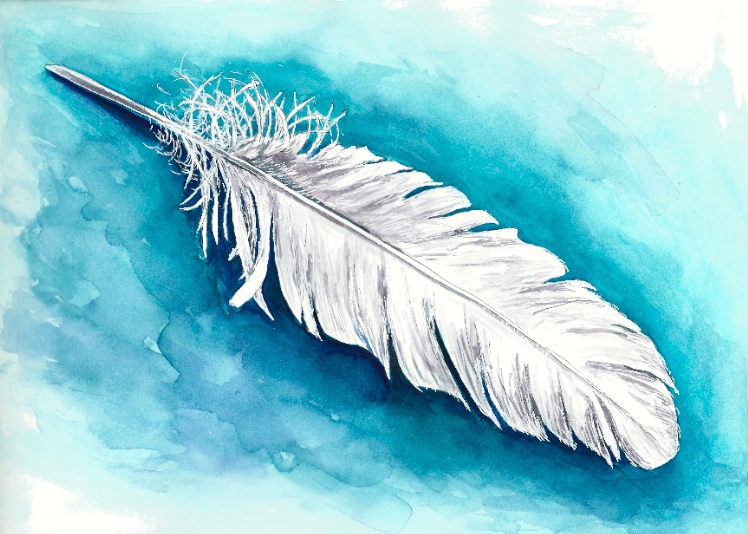 White Feather on Teal