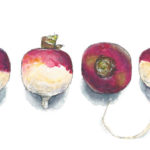 One Turnip, Two Turnip, Three Turnip, Four